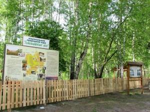 Национальный природный парк Гомольшанские леса